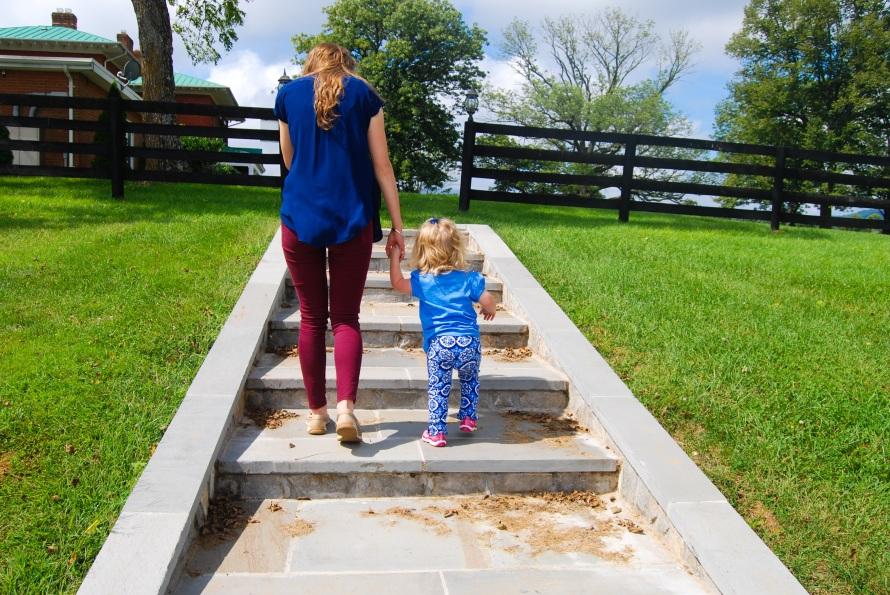 Virginia: Marriott Ranch   Breezing Through
