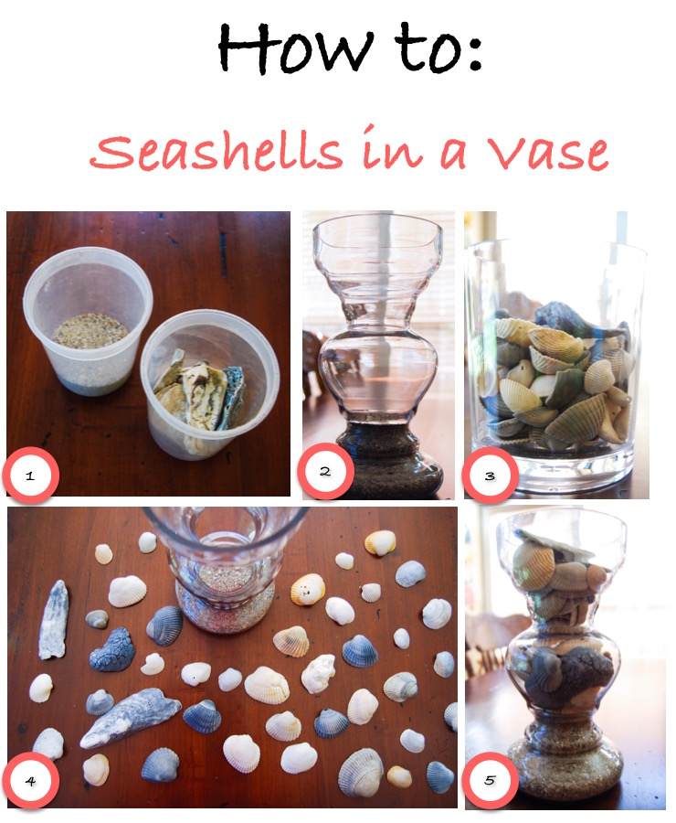 What To Do With Those Seashells | Breezing Through